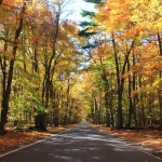 """Fall colors along scenic M-119, the famous """"Tunnel of Trees"""". (Photo: Jeremy Hammond)"""