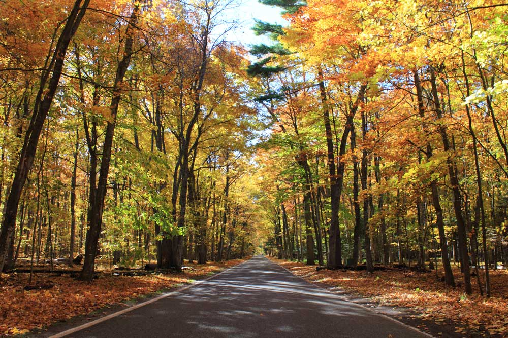 Top 10 Fall Activities in Northern Michigan