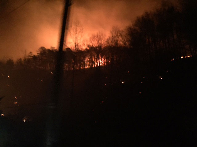 The forest burns during the Gatlinburg fire