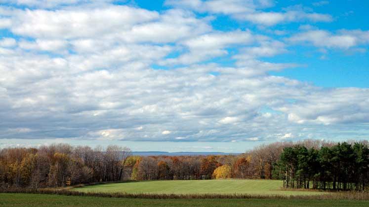 Goodhart Farms Nature Preserve | Northern Michigan Nature Preserves