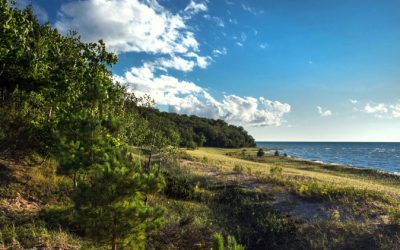 Top 15 Northern Michigan Nature Preserves for Family Nature Hikes