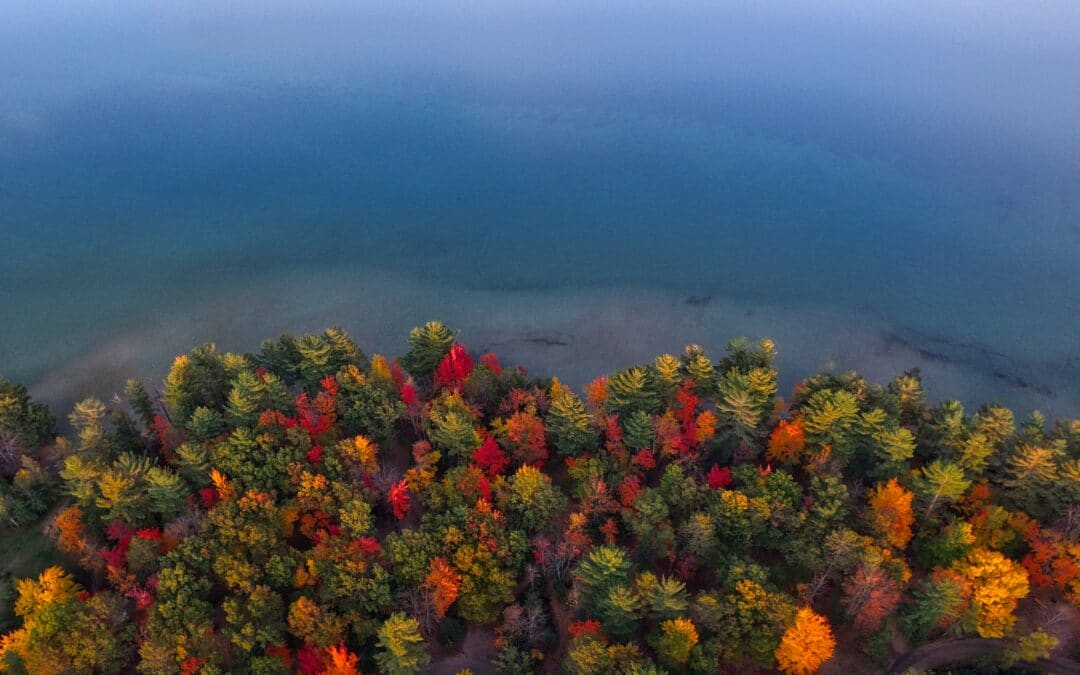 Lose Yourself in the Top 4 Fall Color Tours of Northern Michigan